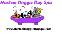 harlem doggy day spa